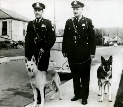 Police dogs Sandy and King