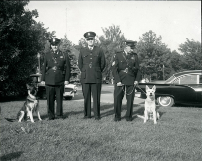 Police dogs Sandy and King join the force, 1960